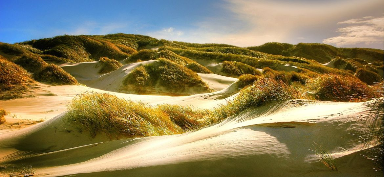 dunes-2366302_1920